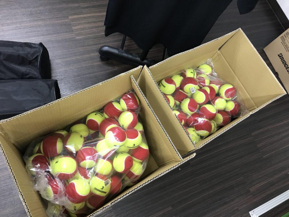 SpecialTennis用のネットとレッドボールを購入!